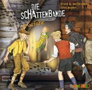 Cover-Bild zu Reifenberg, Frank M.: Die Schattenbande in Gefahr (3)