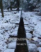Cover-Bild zu Goldsworthy, Andy: Andy Goldsworthy: Projects
