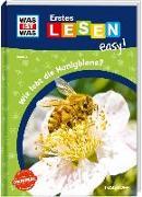 Cover-Bild zu Meierjürgen, Sonja: WAS IST WAS Erstes Lesen easy! Band 3. Wie lebt die Honigbiene?