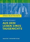 Cover-Bild zu Aus dem Leben eines Taugenichts (eBook) von von Eichendorff, Joseph