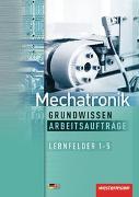 Cover-Bild zu Fuhrmann, Jörg: Mechatronik nach Lernfeldern / Mechatronik Grundwissen