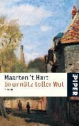 Cover-Bild zu Hart, Maarten 't: In unnütz toller Wut