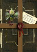 Cover-Bild zu DiTerlizzi, Tony: Arthur Spiderwick's Field Guide to the Fantastical World Around You