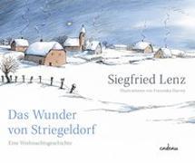 Cover-Bild zu Das Wunder von Striegeldorf von Lenz, Siegfried