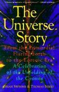 Cover-Bild zu Swimme, Brian: The Universe Story