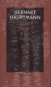 Cover-Bild zu Hauptmann, Gerhart: Tagebuch 1892 bis 1894 - Tagebücher