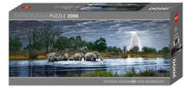 Cover-Bild zu Herd of Elephants von Bernasconi, Alex