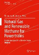 Cover-Bild zu Natural Gas and Renewable Methane for Powertrains (eBook) von van Basshuysen, Richard (Hrsg.)
