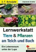 Cover-Bild zu Tiere & Pflanzen an Teich und Bach von Schäfer, Stephanie
