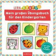 Cover-Bild zu Lernraupe - Mein großes Übungsbuch für den Kindergarten von Beurenmeister, Corina (Illustr.)