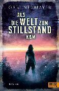 Cover-Bild zu Neumayer, Gabi: Als die Welt zum Stillstand kam (eBook)