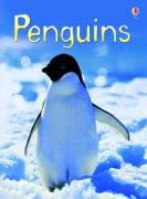 Cover-Bild zu Bone, Emily: Penguins