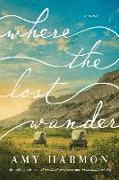 Cover-Bild zu Harmon, Amy: Where the Lost Wander