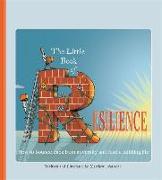 Cover-Bild zu Johnstone, Matthew: The Little Book of Resilience