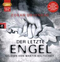 Cover-Bild zu Drvenkar, Zoran: Der letzte Engel