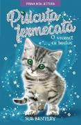 Cover-Bild zu Bentley, Sue: Pisicu¿a Fermecata (eBook)