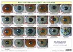 Cover-Bild zu Garvelmann, Friedemann: Konstitutionsorientierte Irisdiagnose