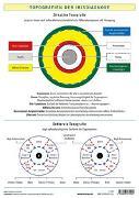 Cover-Bild zu Garvelmann, Friedemann: Topografien der Irisdiagnose