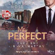 Cover-Bild zu Rose, Leander: Mr. Perfect (Audio Download)