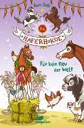Cover-Bild zu Kolb, Suza: Die Haferhorde - Für kein Heu der Welt - Band 10