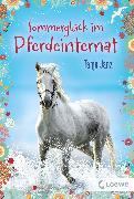 Cover-Bild zu Janz, Tanja: Sommerglück im Pferdeinternat (eBook)