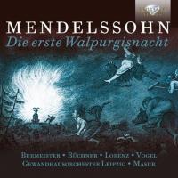 Cover-Bild zu Die erste Walpurgisnacht