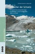 Cover-Bild zu Gletscher der Schweiz von Käsermann, Christoph