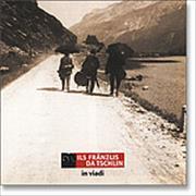 Cover-Bild zu In viadi