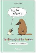 Cover-Bild zu Hallo Mama von Climo, Liz