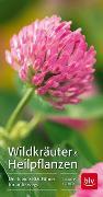 Cover-Bild zu Wildkräuter & Heilpflanzen von Kremer, Bruno P.