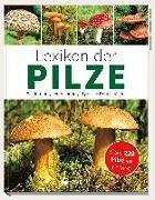 Cover-Bild zu Lexikon der Pilze - Bestimmung, Verwendung, typische Doppelgänger von Kothe, Hans W.