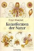 Cover-Bild zu Kunstformen der Natur von Haeckel, Ernst Heinrich
