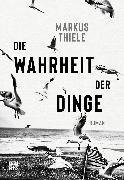 Cover-Bild zu Die Wahrheit der Dinge (eBook) von Thiele, Markus