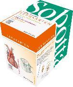 Cover-Bild zu Sobotta Lernkartenpaket