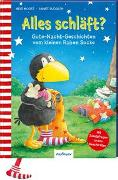 Cover-Bild zu Der kleine Rabe Socke: Alles schläft? von Moost, Nele