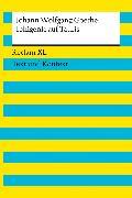 Cover-Bild zu Iphigenie auf Tauris. Textausgabe mit Kommentar und Materialien von Goethe, Johann Wolfgang