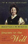 Cover-Bild zu Journey to the Well (eBook) von McKenzie, Vashti M.