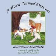 Cover-Bild zu A Horse Named Princess von Miller, Holly