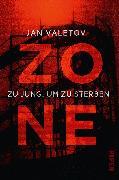 Cover-Bild zu Zone von Valetov, Jan