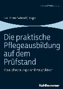 Cover-Bild zu Die praktische Pflegeausbildung auf dem Prüfstand (eBook) von Sahmel, Karl-Heinz (Hrsg.)