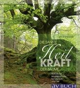 Cover-Bild zu Sanft heilen mit der Kraft der Bäume von Pilaske, Rita