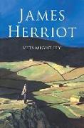 Cover-Bild zu Vets Might Fly von Herriot, James