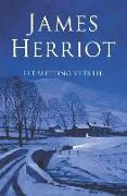 Cover-Bild zu Let Sleeping Vets Lie von Herriot, James