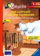 Cover-Bild zu Das Gespenst auf dem Dachboden von Königsberg, Katja