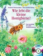 Cover-Bild zu Wie lebt die kleine Honigbiene? von Reichenstetter, Friederun
