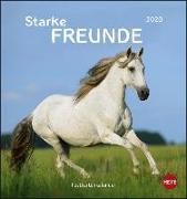 Cover-Bild zu Pferde Postkartenkalender - Starke Freunde Kalender 2020 von Stuewer, Sabine