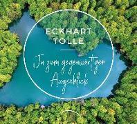 Cover-Bild zu Ja zum gegenwärtigen Augenblick von Tolle, Eckhart