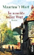 Cover-Bild zu Hart, Maarten 't: In unnütz toller Wut (eBook)