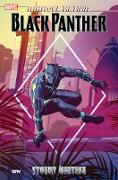 Cover-Bild zu Baker, Kyle: Marvel Action: Black Panther: Stormy Weather (Book One)