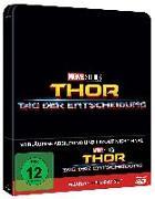 Cover-Bild zu Kyle, Craig: Thor: Tag der Entscheidung